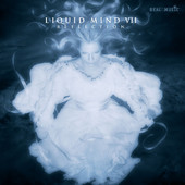 Liquid Mind VII: Reflection